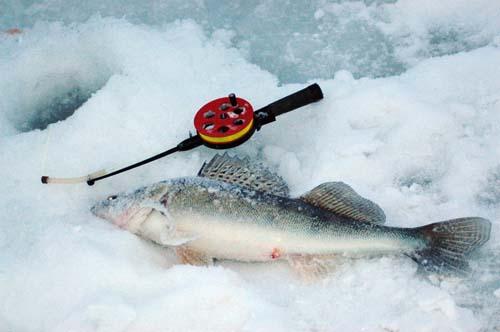рыбалка на средней каме