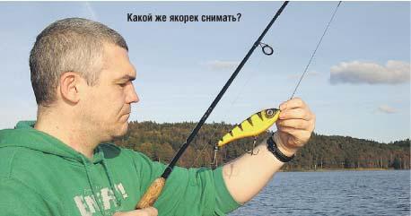 рыболовные идеология получи и распишись дону
